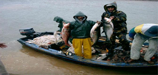 السيد يوسف بنجلون رئيس غرفة الصيد البحري المتوسطية : ناقوس الخطر ….. قبل فوات الأوان.