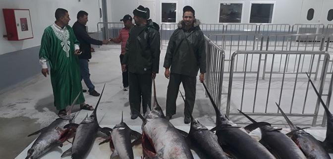 بعد تدشينه من طرف صاحب الجلالة، بنجلون يحبط مناورة خطيرة لنسف تنشيط ميناء الصيد بطنجة.