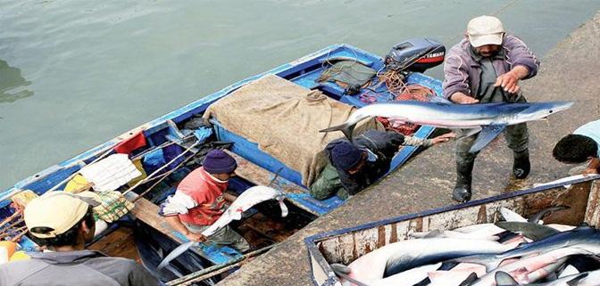 انخفاض حجم التفريغ لمنتوجات الصيد الساحلي والتقليدي.
