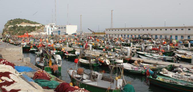 دورات تكوينية في جامعة الصيد البحري التقليدي